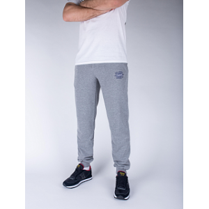 Спортивні штани Big Shark - Premium, Grey